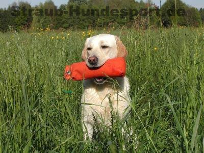 Dummies - Trainingsgegenstände für Schuß-Bring-Hunde