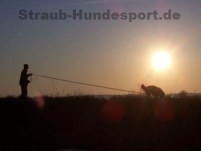 Fährtenzubehör - Straub-Hundesport - Wir statten Sie aus!