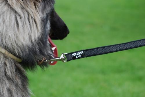 gummierte Nylonleine von K9 bei Straub-Hundesport.de