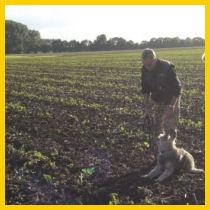 Welpen brauchen Herausforderungen - Ausbildungshilfen für Junghunde und Welpen bei Straub Hundesport