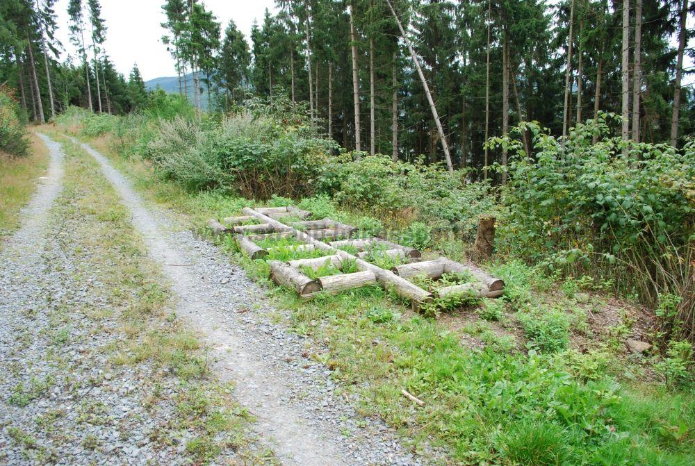 Hunderlebnispfad Holzgitter