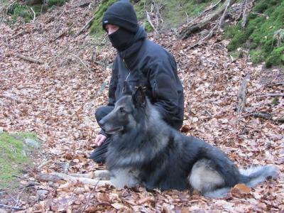Accessoires für Hundebesitzer