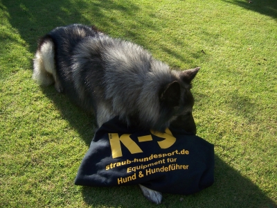 Rundhalspullover von Julius-K9 bei Straub-Hundesport