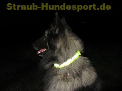 Warnhalsungen sind nicht nur im Jagdsport ein wichtiges Equipment